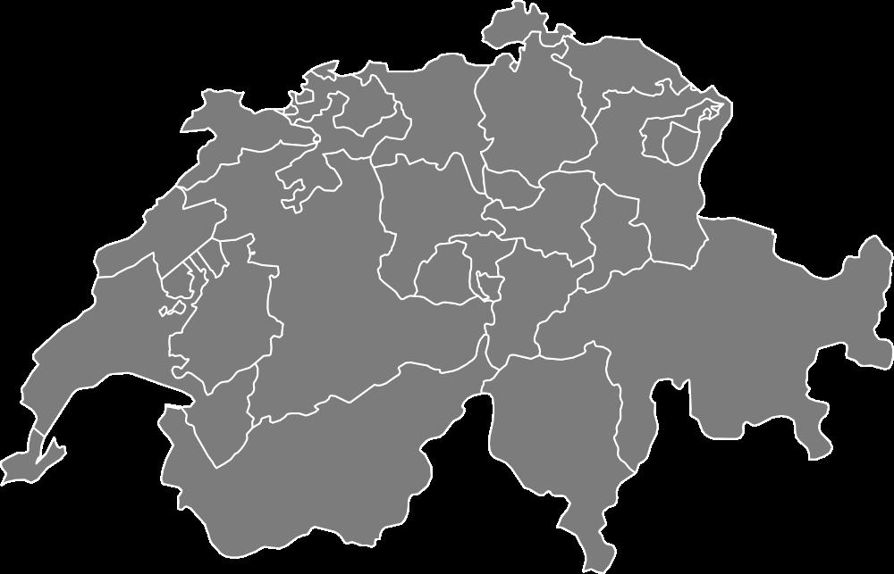 您在瑞士房地产的可靠和称职的合作伙伴